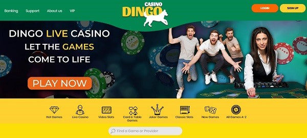 Join Dingo's games and play for jackpots!